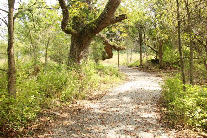 Main Trail at Dupree Nature Preserve © Craig Dooley