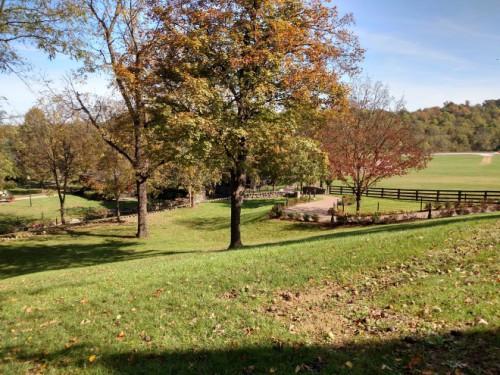 Fall in Kentucky.